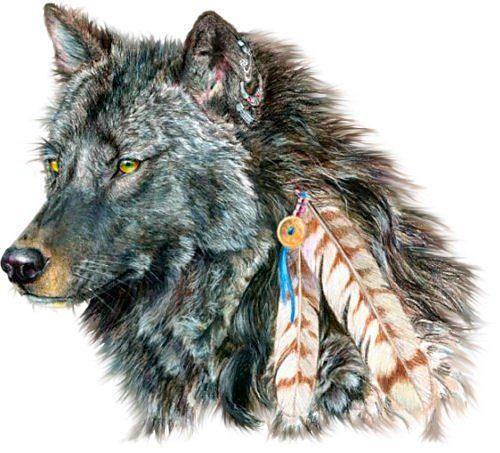 The Wolf Ceremony